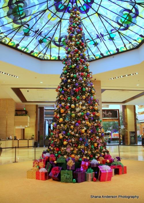 Hilton Holiday-049