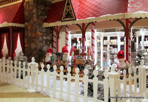 Hilton Holiday-fb-005