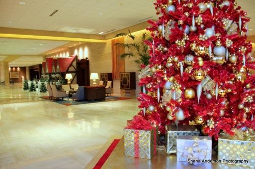 Hilton Holiday-fb-009